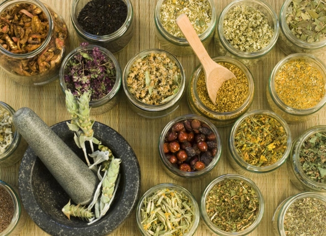 power-of-herbal-home-remedies-video-lecture